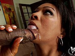 Hot tempered black dude Jon Jon fucks hussy ebony chick Anita Peida without mercy. He drills her hairy cunt hard missionary style and makes her moan under the waves of pleasure.