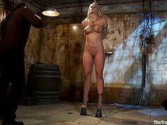 Cute sexy blonde Holly Heart allows a guy called Maestro dominate her in the living room in the presence of some people. Maestro torments Holly and then destroys her snatch with his dick.