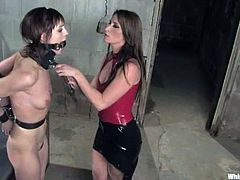 Submissive girl gets tied up and gagged by her hot mistress. After that she also gets suspended and toyed rough with a strap-on.