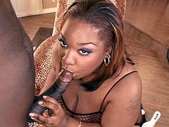 Hottest Ebony Sex