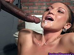 Spring Thomas sucks big black cock pushed through the hole in a wall. Suddenly another Black guy comes up and starts to fuck her from behind.