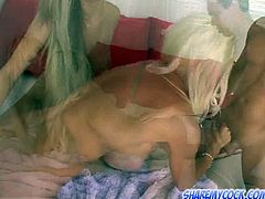 Nasty blondie is bent in doggy style while the other gal pleasures her with titjob. Nasty girl licks her pussy lying underneath her butt.