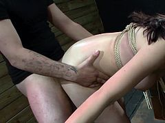 Cute Japanese babe loves to obey and get tied up during rough bondage porn