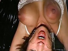 Babes are into serious stuff during top hardcore gang bang porn shows