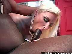 She was massaging that black dude and suddenly start wanking his huge cock. She start sucking it and few guys come to get blowjob too.