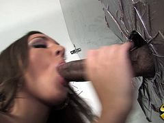 Kiera is a white girl who loves the big black dick. The cock that came though the gloryhole was so huge she had to use it to fill her tight pussy up.