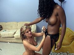 Share this with your friends! An ebony babe with a white lady go hardcore together, playing with a strapon and big dildos until both of them cum!