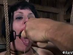 The end of a long road trip means a chance to stretch your legs and blow off a little bit of steam. For Katharine Can it means hard bondage.See how this sexy long legged brunette babe gets her hard treatment in bondage, where he pussy is gets whips and her mouth gets fucked by a huge dildo.