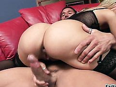 Jenny Hendrix getting anal satisfaction with horny guy Tommy Gunn after she gives head