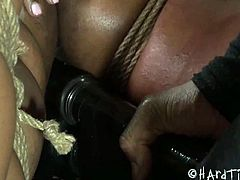 Chanell Heart is a sweet ebony babe who gets brutally spanked by master Jack Hammer. He uses a thick paddle to spank her juicy ass and stimulates her cunt with a vibrator.