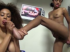 Two petite ebony angels are sharing a big cock