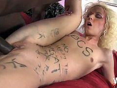 Alexia Skye has written all over her body that she is a black cock slut. This chocolate stud fucks her and writes some more offending words on her while doing so.