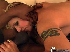 Who hasn't heard about Brittany Blaze? If this name means nothing to you, it's about time you got familiar with it. Sex-starved hottie sucks her lover's BBC with great enthusiasm paying special attention to his balls. Then she rides him in reverse cowgirl position.