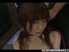 Asians Bondage brings you a hell of a free porn video where you can see how a sexy long-haired Japanese woman gives head after getting collared by her horny master.