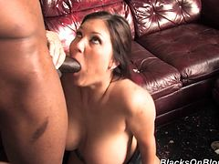 Lustful Claire gives a handjob and a blowjob to the Black dude. She takes hard pussy and butt pounding. Obviously it is the best day in her life. No one can fuck White chicks better than Black guys.
