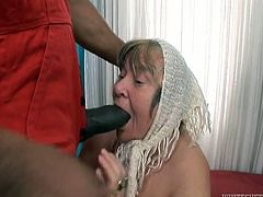 Hefty figured blond chick is impossibly old for fuck. But that black young freak talked that jadish woman to taste his chocolate sausage deep throat. It was a nice chance for this old bitch to feel that she is still young enough...Have a look at this hard deep throat in Fame Digital sex clip!