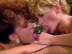 Horny and sexy bitches with nice asses and in hot dress sucks the cock in turn and gets fucked in cowgirl pose. Have a look in steamy The Classic Porn sex clip.