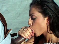 Check out this hardcore interracial scene where the horny brunette Ice La Fox is fucked by a thick black cock.