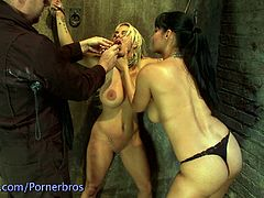 This blonde babe has her big nipples sore because of all the nipple clamps attached to them. Her pussy is teased with a big vibtrator while she's tied up with rope.