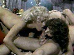 Blonde whore sucks Sultan's dick deepthroat while brunette girl pleases Sultan's guest's meat pole with her mouth lips. Hussy blonde jade joins brunette chick so now they fuck in FFM threesome. Check out this filthy vintage sex video presented by The Classic Porn.