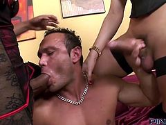 Horny shemales sluts Emanuela and Sabrina just got their paws on a hunk. They give him a taste of their dicks and then go inside the home where some wild gay action takes place. The muscled guy gets his cock sucked by one of the bitches while the other fills his mouth with dick. Want to see some more?