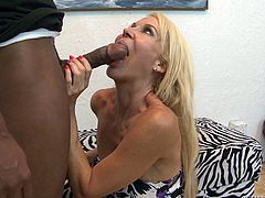 Erica Lauren gets nailed by a big cock in this hardcore scene after she sucks on this brother's black monster.