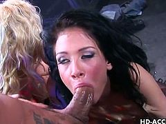 Big Tits HD brings you a hell of a free porn video where you can see how Tory Lane and Hillary Scott get fucked together. Watch then getting their cunts blasted very hard!