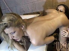 Lexi and Michelle go into a basement room, strip off their clothes, and go to work on their wet, pink pussies as they get each other off.