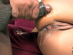 Tattooed milf Sienna West is having fun with a horny black man. She drives him crazy with a blowjob and then they fuck in cowgirl position and have awesome anal sex.
