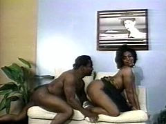Voluptuous ebony woman takes off her dress seducing her black lover. Busty chocolate babe spreads her legs and lets her horny fucker eat her soaking wet poontang.