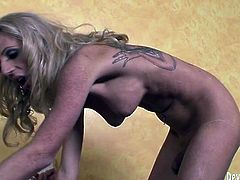 Kinky and filthy bitch with nice ass and awesome boobs lays in sixty nine pose sucking the dick for the guy and getting her cock sucked by the man. Have a look at this transsexual in Fame Digital sex clip.