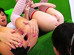 Three stunning brunettes, all decked out in thigh-high, striped socks, take turns eating each others shaved pussies. Oh, and I spied a little ass hole lickin goin on there, too.