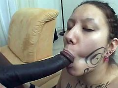 Take a nice look at this brunette chick, with small tits and a sweet pussy, while a black guy puts his schlong in her mouth until he cums.
