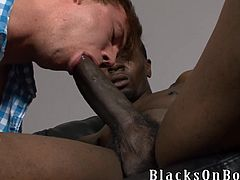 This White guy loves big black cocks. He sucks a dick and also licks balls passionately. Later on he gets his ass torn up by a Black guy.