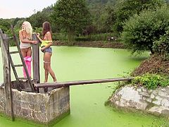 Two girls land on a green shore. They´ve prepared a pink blanket, but that´s not the time for a picnic, it´s high time for having sex! The skinny blonde and the brown-haired chick help each other get undressed. Both get really horny and want some action...