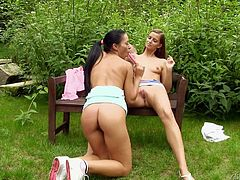 These two daring dykes are sitting on the park, having a nice chat, when one suggest some kinky fun. They pull down their tops, to reveal those nice perky tits and then, get into some mutual masturbation with the cute panties around their ankles. She's on her knees, eating cunt, with the help of a sex toy.