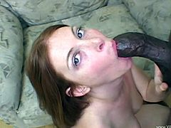 Ginger Blaze is a redhead chick in glasses. This nerdy girl takes off her clothes and gives a blowjob to a Black dude in close-up scenes. Then curvy Ginger gets fucked in her pink pussy.