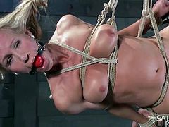 She's a cheap whore that loves to be punished and dominated! Well, this blonde came to the right place for that! Our executor made a few tight knots and then, he hanged her like the cheap slut she is. He made sure she's ball gagged and her legs will be spreads. Curious why for? Why not hang around and find out!