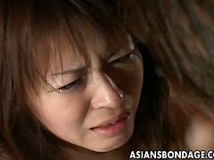 Asians Bondage brings you a hell of a free porn video where you can see how a  cute Asian brunette gets bound and tortured into kingdom come while assuming very hot poses.