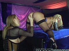 Sizzling blonde Jessica Drake and her GF wearing fishnet tops and stockings are playing lesbian games indoors. They make out and fondle each other and then poke dildos into each other's assholes.