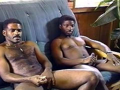 A pair of horny black gays are in the room so they can do their thing, like suck big black cock and pound black ass.