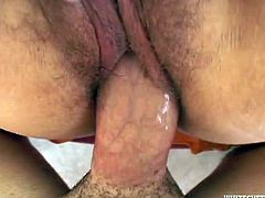 Horny brunette bitch has got heart-shaped booty and hairy snatch. She stands on her all four lifting her ass up in the air. Kinky bitch gets fucked doggy style. Then, the couple fucks missionary style.