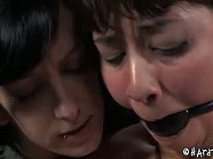 Elise Graves gets tied up by Siren Wolf. This mistress plays with Elise's bound boobs and she also whips her pussy and her stomach area. Siren is not very cruel.