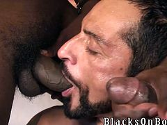 Tom Colt is playing dirty games with two muscular black studs. Tom sucks the BBCs like a bitch and then welcomes them in his asshole.