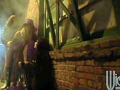 Take a look at this hardcore scene where these gorgeous ladies are fucked by a guy in a back alley as you hear them moan.
