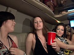 Have fun jerking off to this hot scene where these horny ladies have a great time inside a limousine as they show off their sexy bodies.
