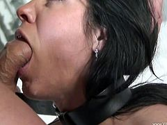 Get a load of this great hardcore scene where the busty Veronica Rayne sucks on this guy's thick cock before being fucked silly as you hear her moan loud and clear.