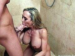 Busty mature woman Brandi Love sucks Seth Gamble's cock like mad
