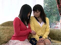 These two Japanese babes have some fun as one strips the other one down and proceeds to tease and please her hairy pussy.