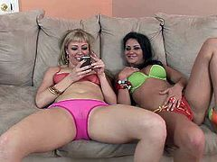 Sex starving bitches Charley Chase and Adrianna Nicole suck BBC like crazy bitches